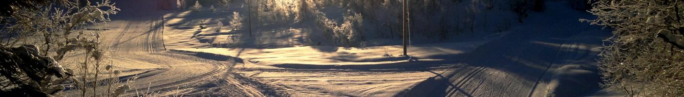 cropped-2011-02-vinter-leikanger-012-c3b8vstestc3b8len-skilc3b8ype.jpg