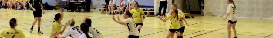 cropped-handballkamp-002.jpg
