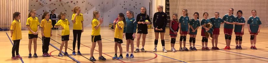 21051206 Handball i Saften